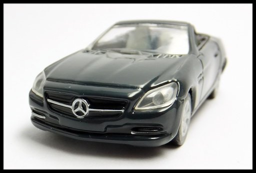 GEORGIA_Mercedes-Benz_SLK_18